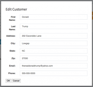 The edit customer details modal that allows you to edit a customers information.